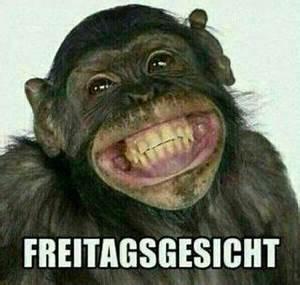 Bilder Schönes Wochenende Lustig : freitag 6 ~ Frokenaadalensverden.com Haus und Dekorationen