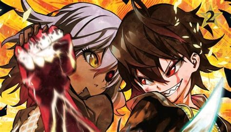Twin Star Exorcists Volume Two Review Snapthirty