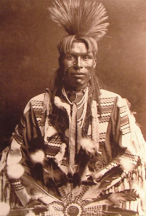 Postcards & Photos Cabinet Photo Native American Indian