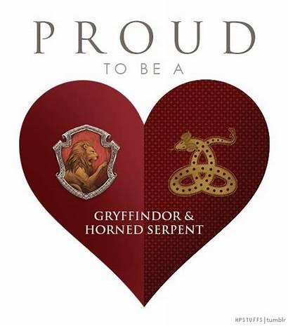 Serpent Horned Potter Harry Hogwarts Houses Gryffindor