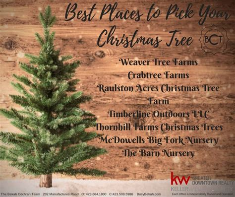 christmas tree farms chattanooga awesome picture of tree farm chattanooga tn fabulous homes interior design ideas
