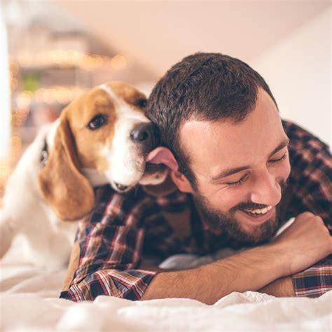 Comment Faire Garder Vos Animaux Pendant Vos Vacances