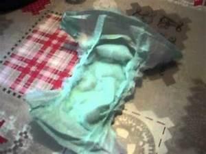 Couche Pour Ado Fille : couche de ma fille le 10 avril youtube ~ Preciouscoupons.com Idées de Décoration