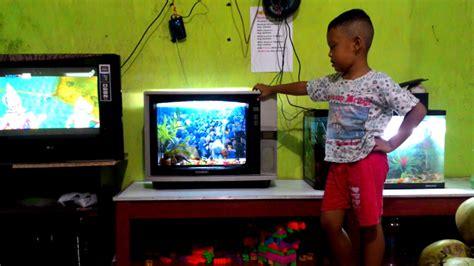 107 likes · 5 talking about this. Aquarium unik dari tv bekas. - YouTube