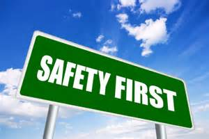 of motor vehicle equipment does not meet Federal Motor Vehicle Safety ... Motor Vehicle Safety