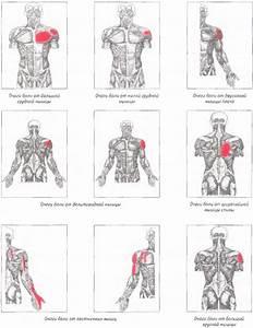 Боль в плечевом суставе анализы