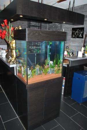 aquarium sur mesure alsace ce qui permet une parfaite int 233 gration et une harmonie de l ensemble