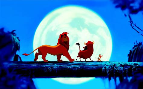 lion king beautiful high quality hd wallpapers  hd wallpapers