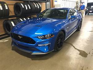 She's on the ground! Velocity Blue 19' : Mustang