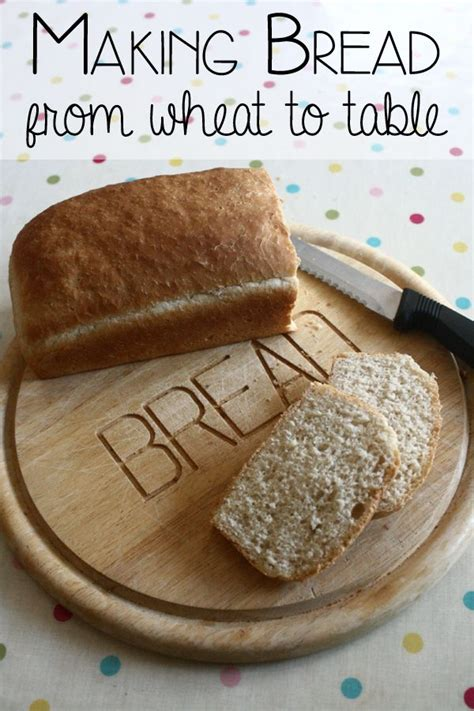 16 best bread theme images on hen 224 | 649f6d87e3067526f75618066e09e286 preschool cooking cooking with kids
