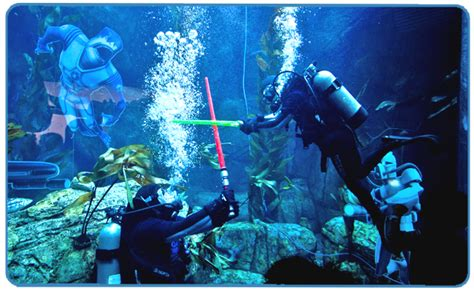 wars aquarium ornaments photo d 233 coration aquarium wars