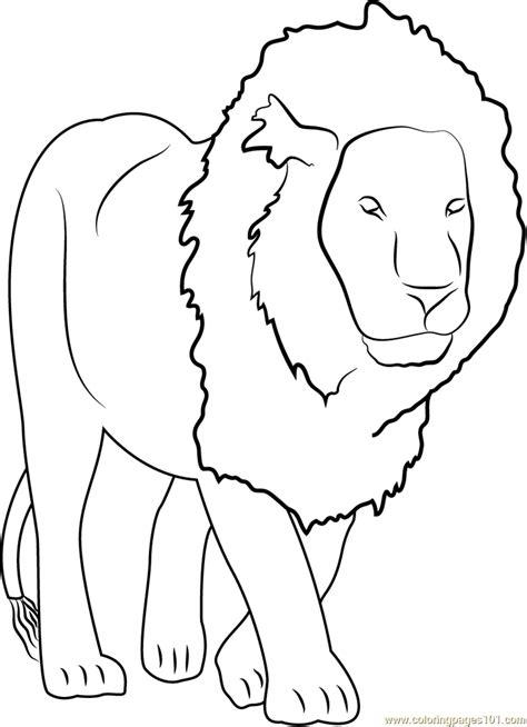 lion coloring page  lion coloring pages coloringpagescom