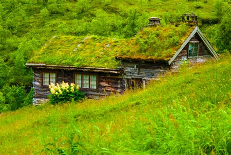 Haus Mit Grasdach by A Gallery Of Centuries Hobbit Style Turf Homes In