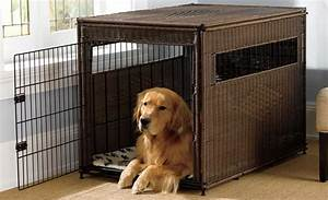 10 best dog crates carriers and kennels of 2017 pet for Puppy dog kennels