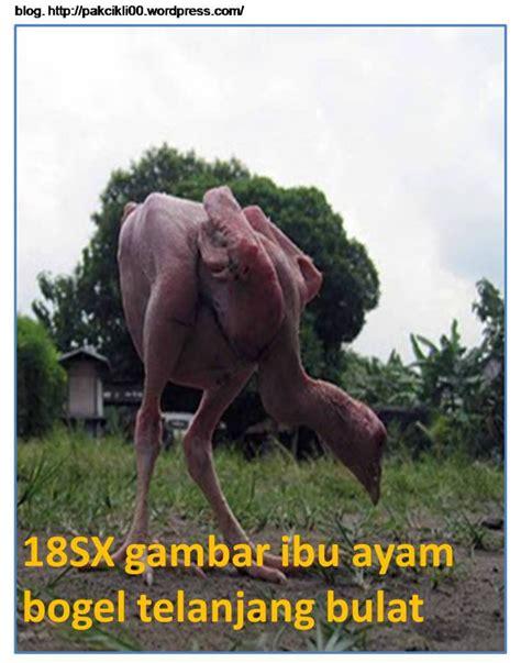 Foto Memek Mulus Dan Tetek Montok Abg Bugil Main Klik