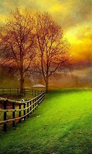 Download Nature HD Wallpapers For Android Gallery