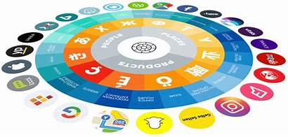 Directory Optimization Services Local Seo Management Agency