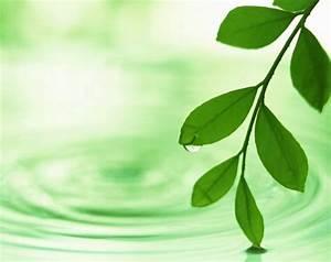 Comble Eco Energie : isolation eco logique energy ~ Melissatoandfro.com Idées de Décoration