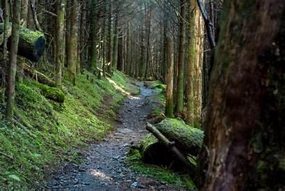 Map Appalachian Trail Interactive Hike Shelters Hiking