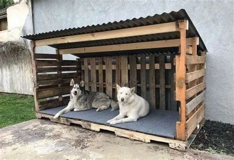 easy diy dog house plans ideas   build  season pallet dog house outdoor dog