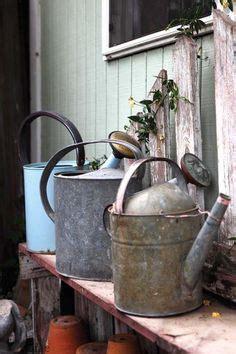 Best Zinc Galvanized Images Gardening