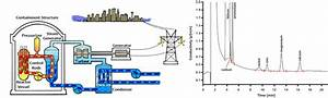 Online Trace Analysis Of Cations In Nuclear Power Plants