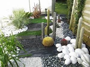 les 25 meilleures idees de la categorie creation de jardin With idee allee de maison 18 creer un jardin avec des cactus et des palmiers