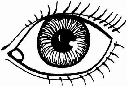 Coloring Eye Eyes Drawing Human Draw Daniel