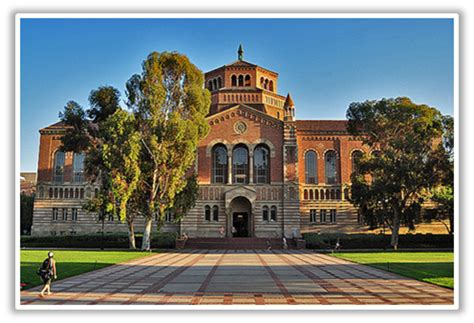 higher education experience ucla