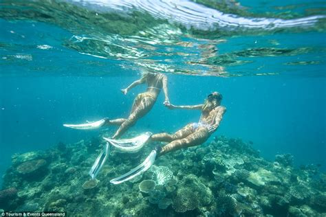 Snorkeling In Key West Without A Boat by Gypsea Lust S Instagram Photos Used By Queensland S