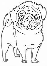 Pug Coloring Pages Print Sheet sketch template