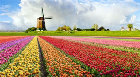Moldova- Germania, Olanda. Пассажирские перевозки Германия, Нидерланды 1 Lei