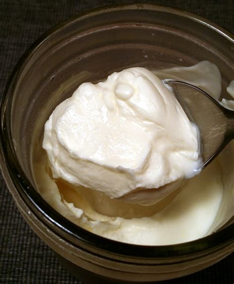 creme fraiche cuisine 5 reasons to ferment food the zero waste chef