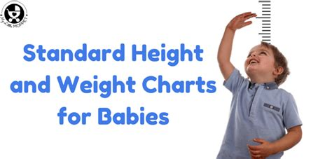 Standard Height And Weight Chart For Babies  Every Parent