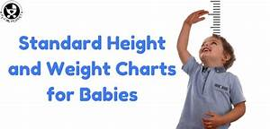 Diet Chart For Children Standard Height And Weight Chart For Babies Every Parent