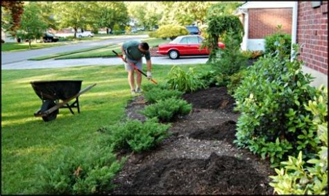 landscaping front landscaping ideas home depot