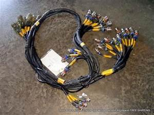 Rolls Royce Aircraft Engine Test Wiring Harness Aerospace 757 Free Shipping