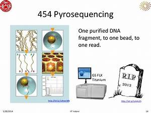 Sequencing: The Next Generation