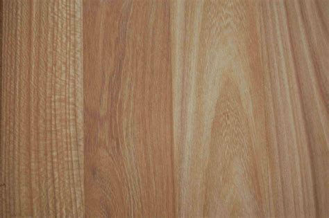 Wood  Junglekeyfr Image #200