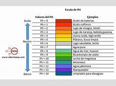 Grados de acidez o de basicidad de la solución – Química 2