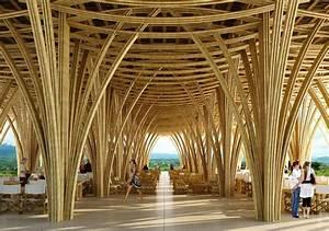 El bambú, el material más sustentable del mundo