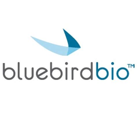 clear plans bluebird bio present global regulatory strategy for gene