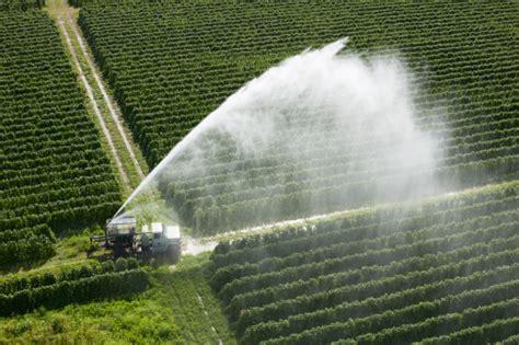 acqua campi irrigazione 200392721-001 - Il Fatto Alimentare