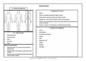 wound care documentation template free printable nursing With wound care plan template