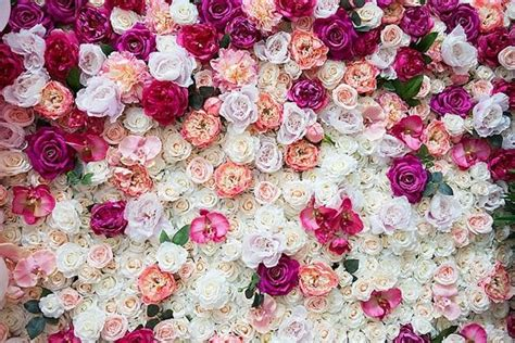 flower wall mhxmw  pink confetti