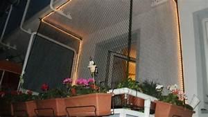 katzensicherungsnetz fur balkon oder terrasse frag mutti With französischer balkon mit seil für sonnenschirm