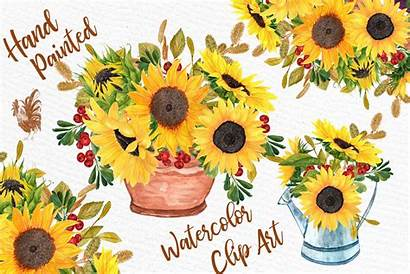 Sunflower Watercolor Clipart Flowers Bouquets Floral Yellow