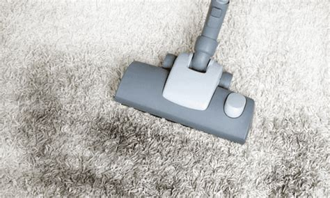 Affordable Carpet Cleaning By Steam Genie How Much Does Carpet Edging Cost Blue Fleck North Bay Ontario Cleaners Empire Commercial Dogs Olympia Carpets Rawalpindi Hoky Sweepers Uk Cheapest In Wichita Ks Can I Get Pet Urine Smell Out Of