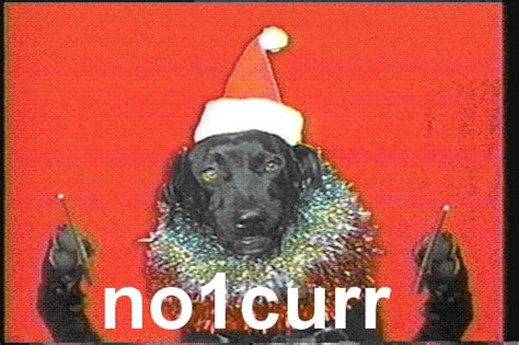 xmas for the one who has everything no one cares gif find on giphy