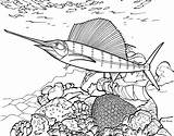 Coloring Realistic Ocean Fish Underwater Reef Template Colouring Printable Coloringhome Sea Animal Swordfish Coral Lily Pad Popular Sail Tropical Creatures sketch template